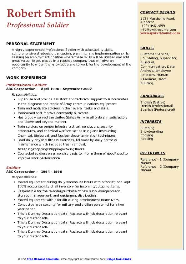 Professional Soldier Resume Example
