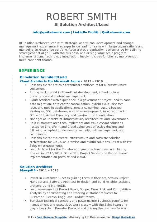 BI Solution Architect/Lead Resume Format