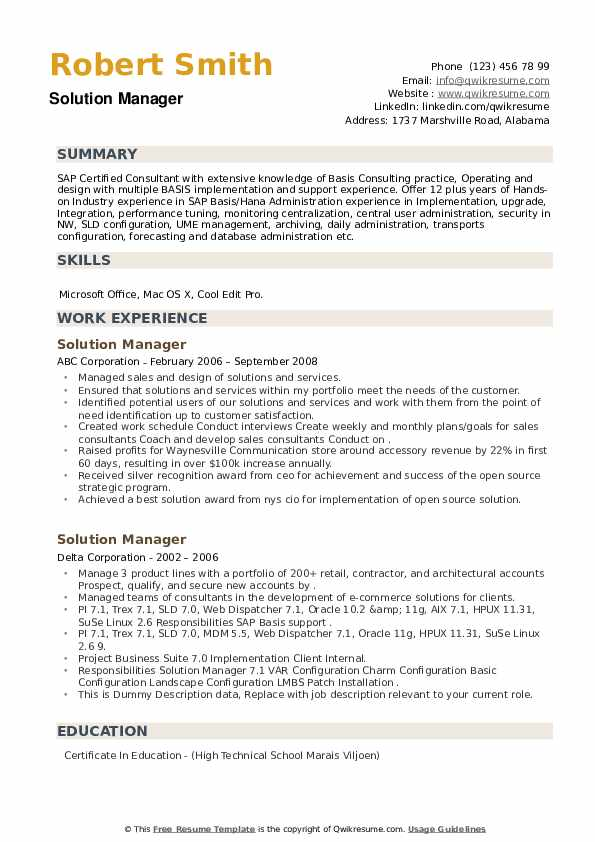 Solution Manager Resume example