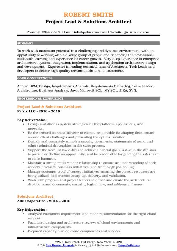 Project Lead & Solutions Architect Resume Format