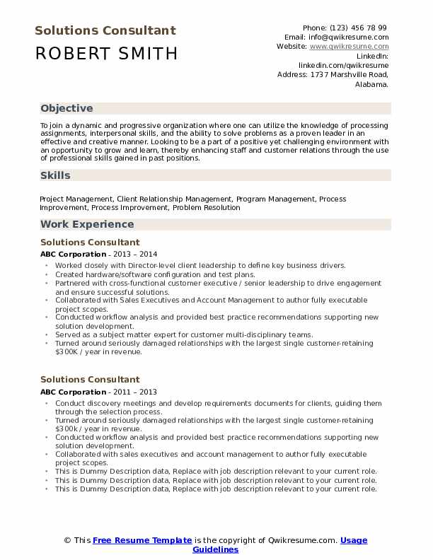 Solutions Consultant Resume example