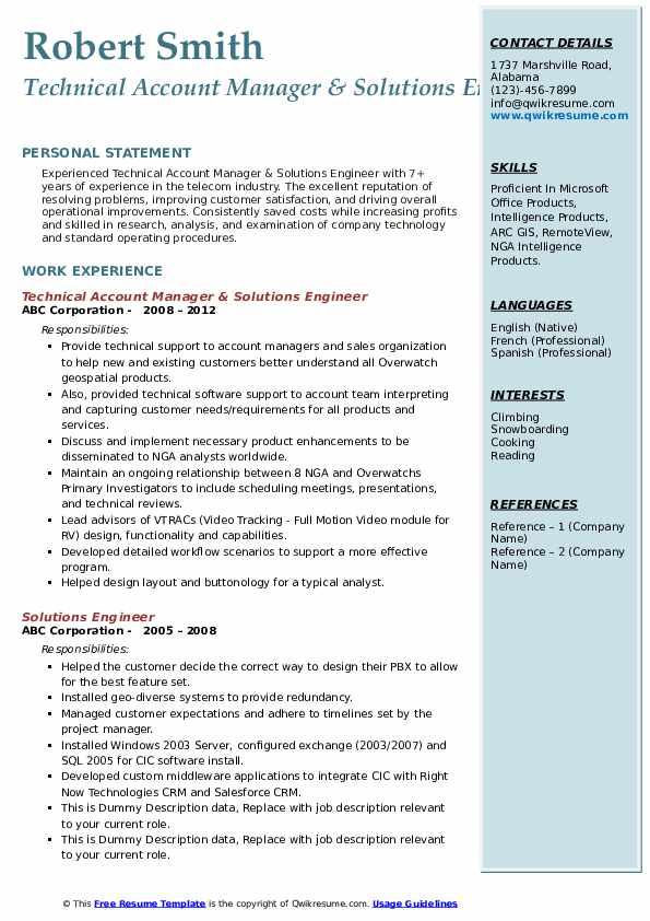Technical Account Manager & Solutions Engineer Resume Sample