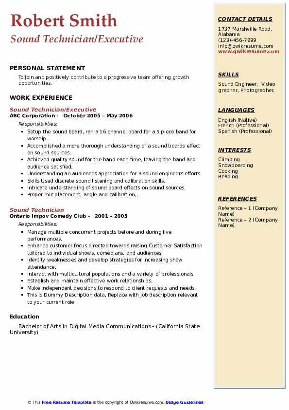 Sound Technician Resume example