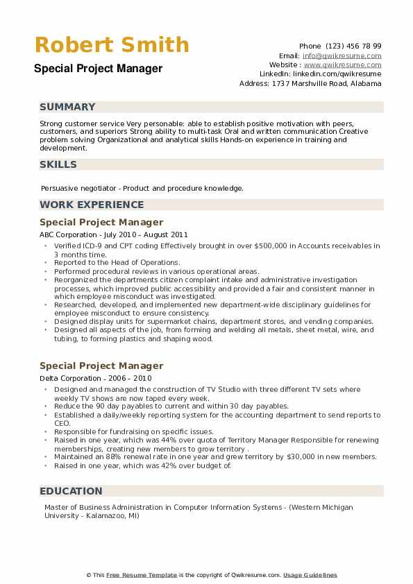 Special Project Manager Resume example