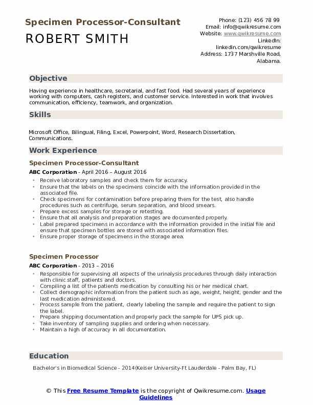 Specimen Processor-Consultant Resume Format