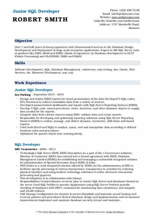 Junior SQL Developer Resume Template