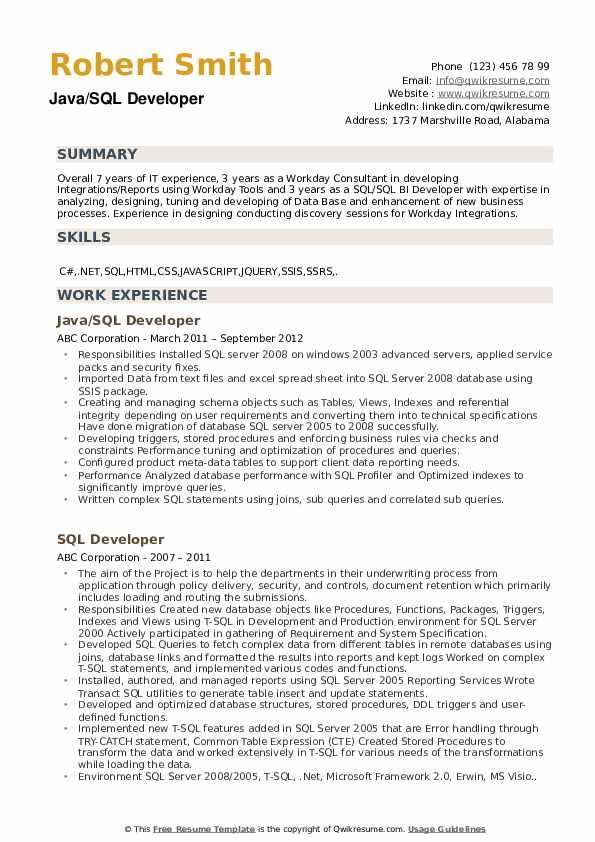 Java/SQL Developer Resume Model