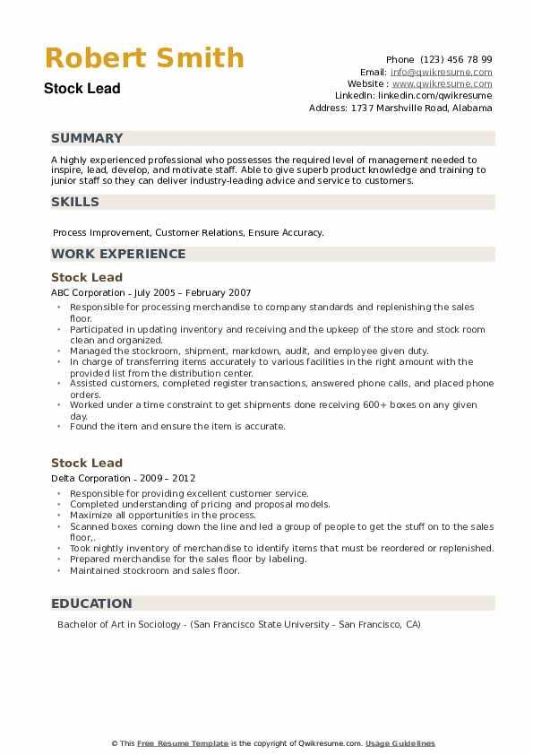 Stock Lead Resume example