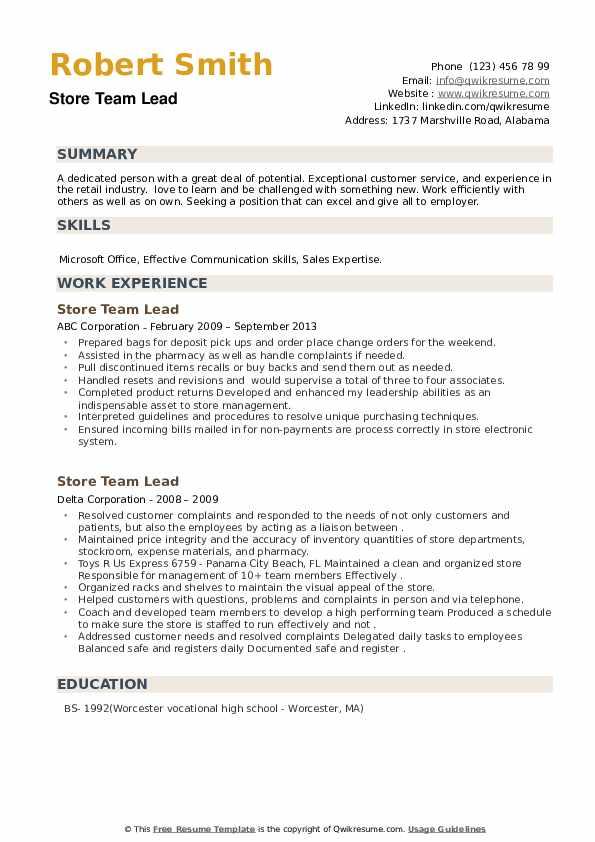 Store Team Lead Resume example
