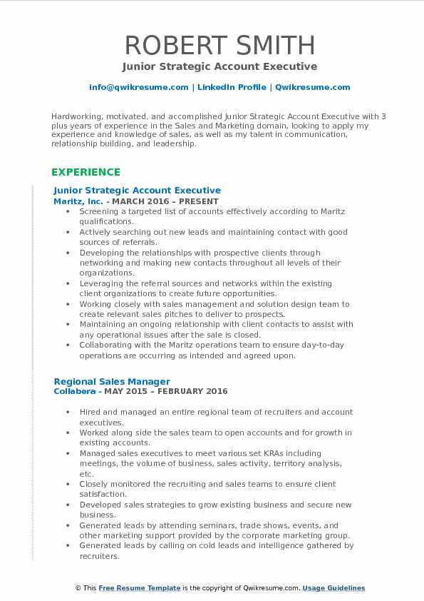 Junior Strategic Account Executive Resume Template