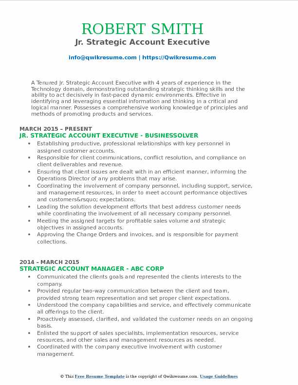 Jr. Strategic Account Executive Resume Model