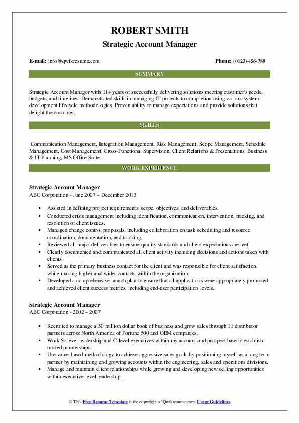 Strategic Account Manager Resume example