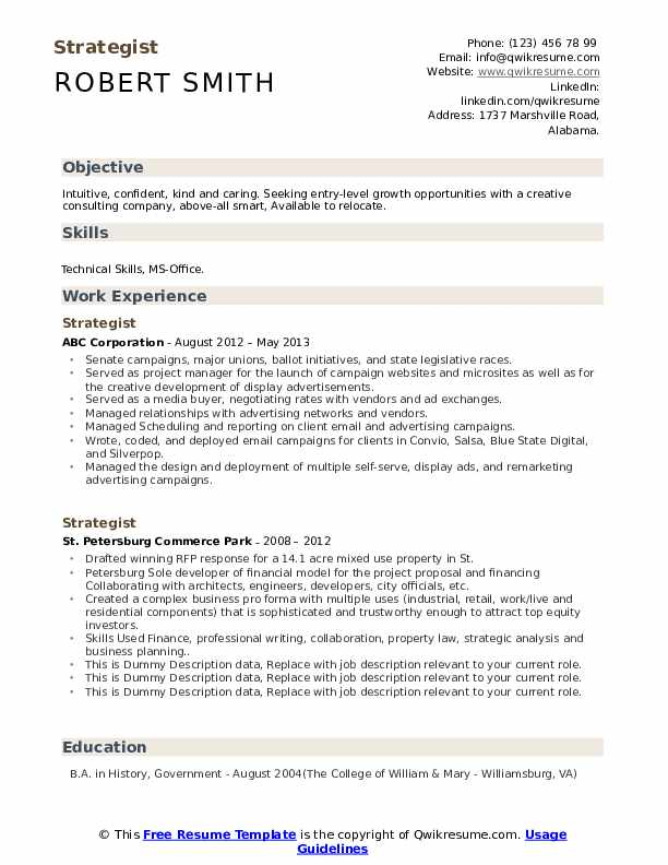 Strategist Resume example