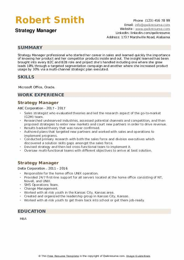 Strategy Manager Resume example