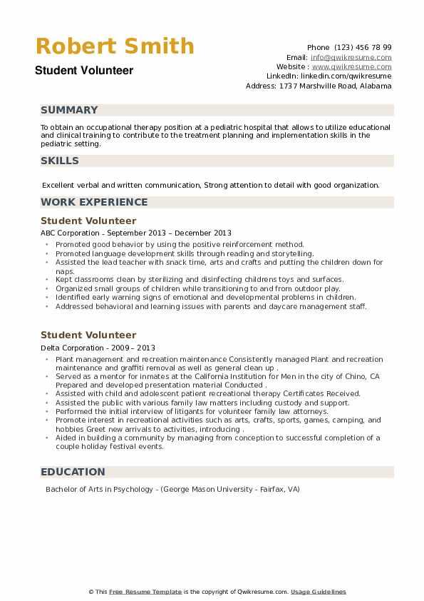 Student Volunteer Resume example