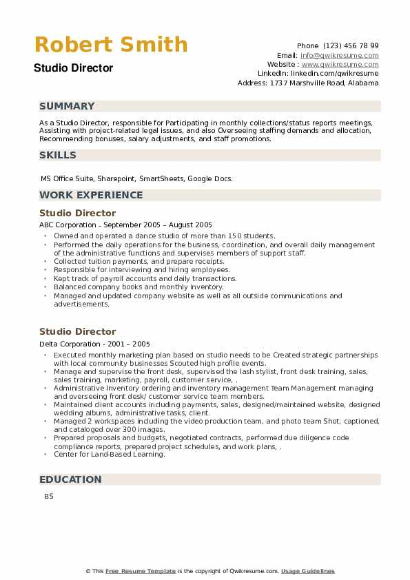 Studio Director Resume example