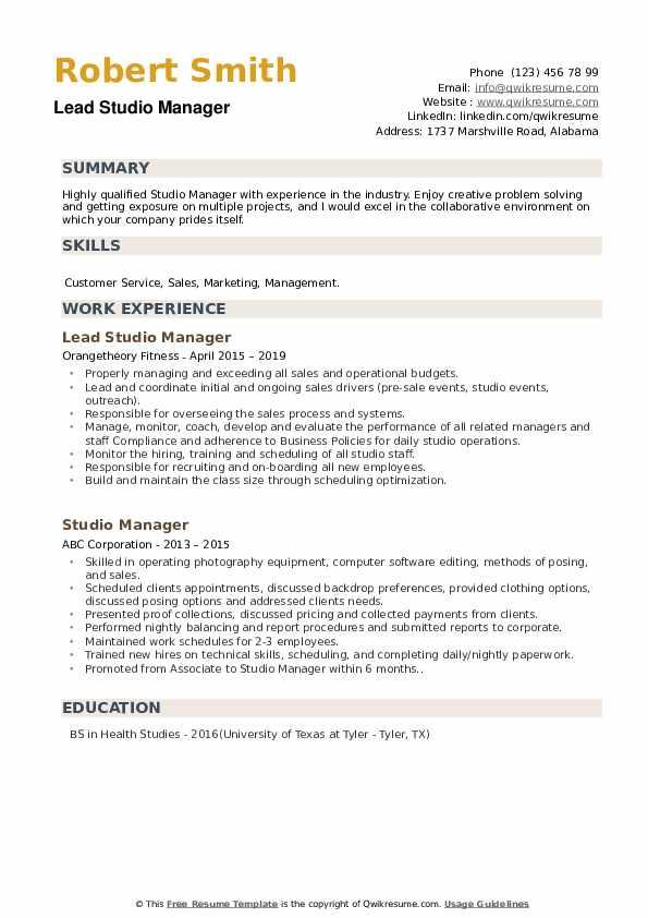 Lead Studio Manager Resume Format