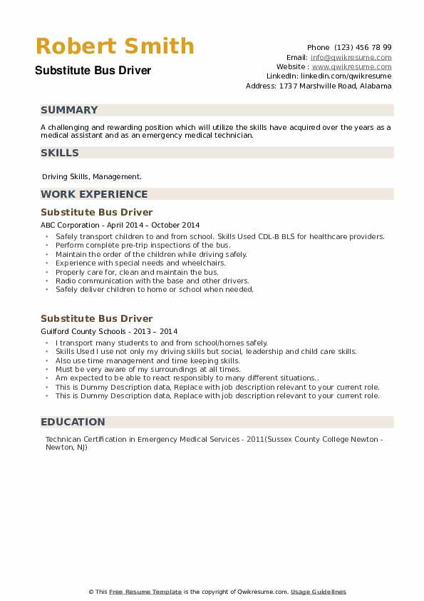 Substitute Bus Driver Resume example