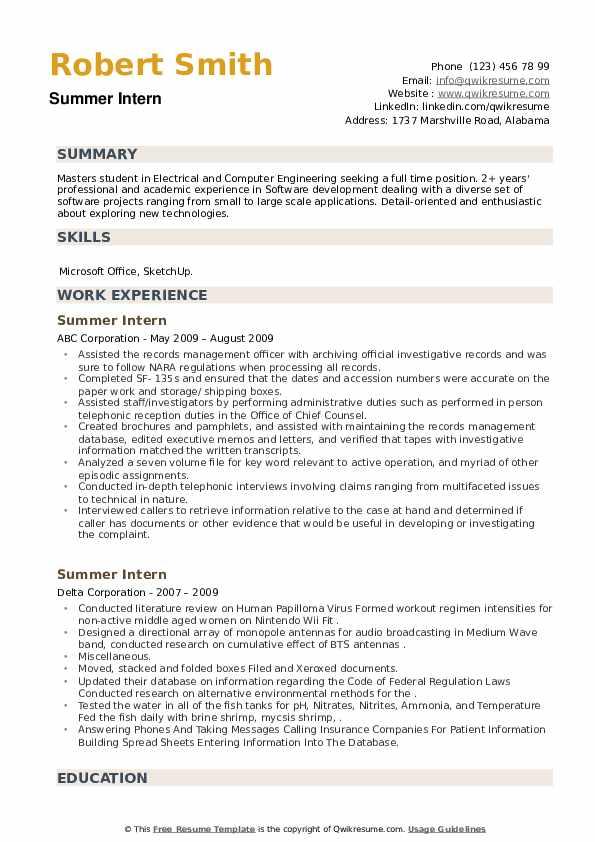 Summer Intern Resume example