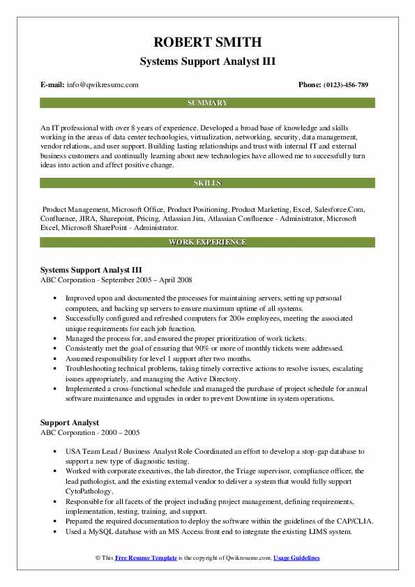 Systems Support Analyst III Resume Format