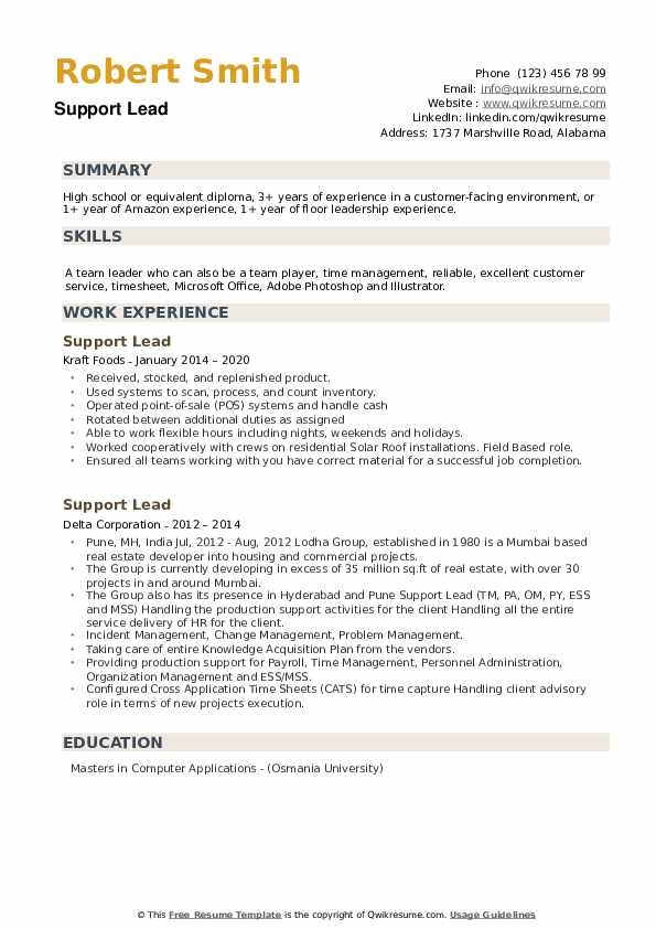 Support Lead Resume example