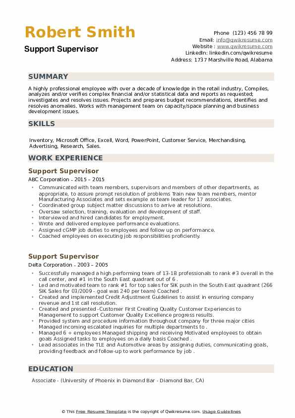 Support Supervisor Resume example