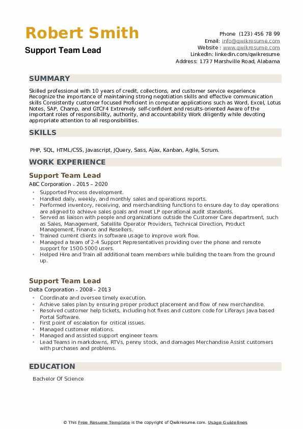 Support Team Lead Resume example