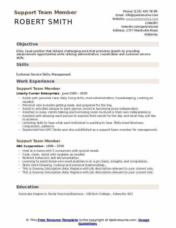 Support Team Member Resume example