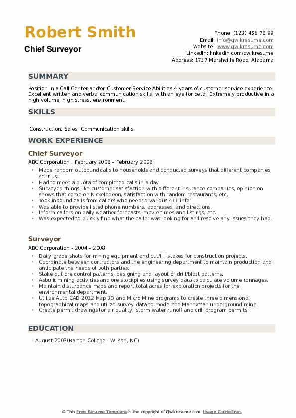 Chief Surveyor Resume Format