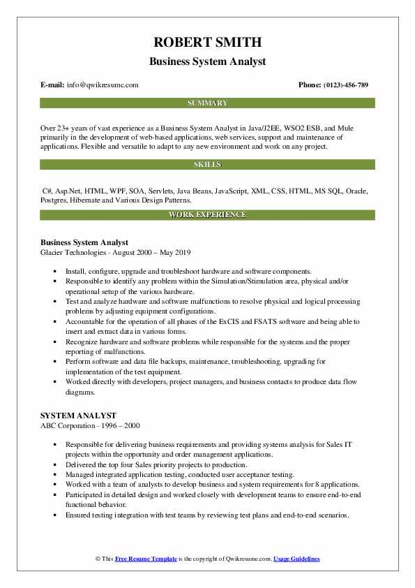 Business System Analyst Resume Model