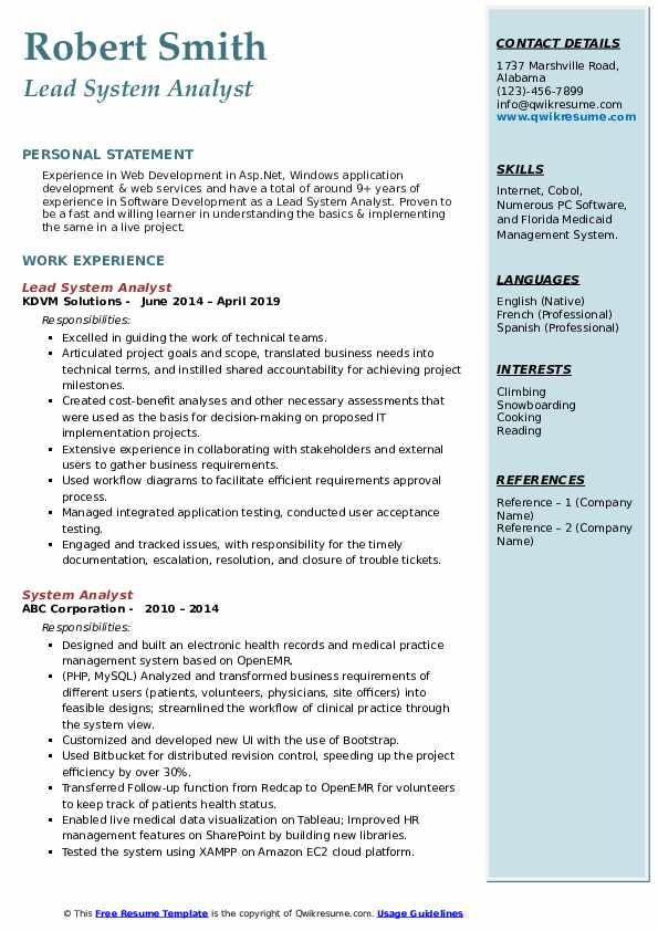 Lead System Analyst Resume Template