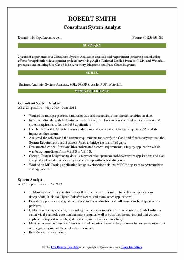Consultant System Analyst Resume Sample