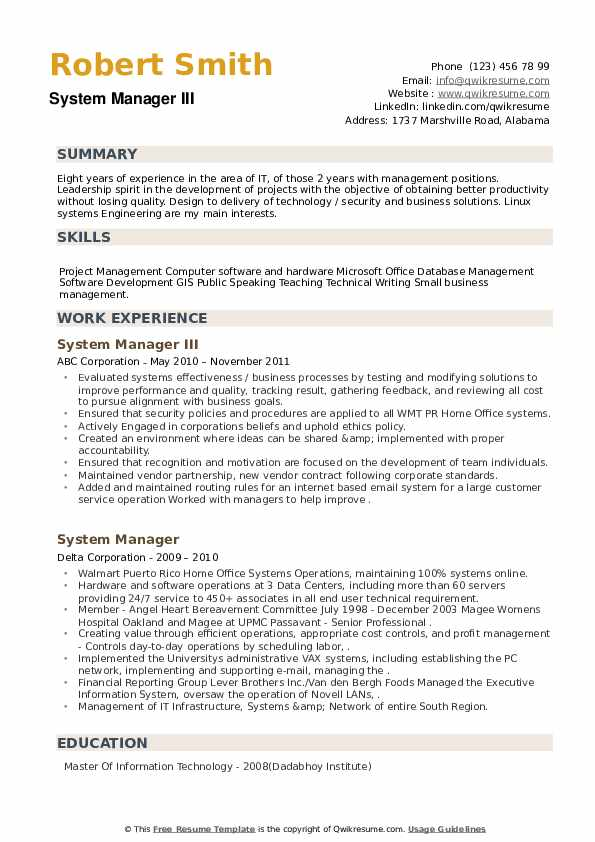 System Manager Resume example