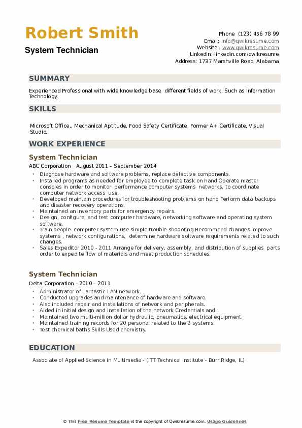 System Technician Resume example