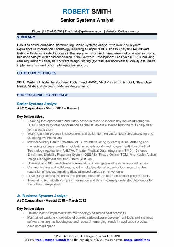 Senior Systems Analyst Resume Example