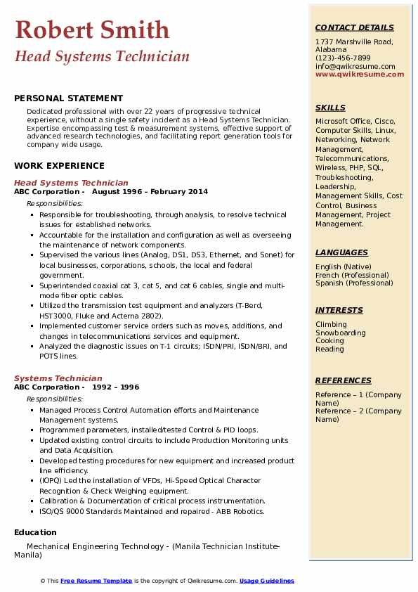 Head Systems Technician Resume Model