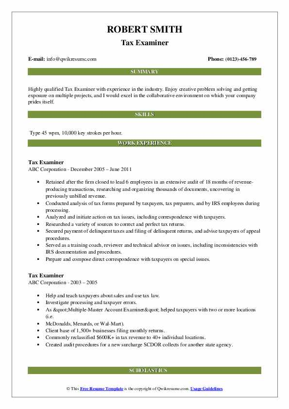 Tax Examiner Resume example