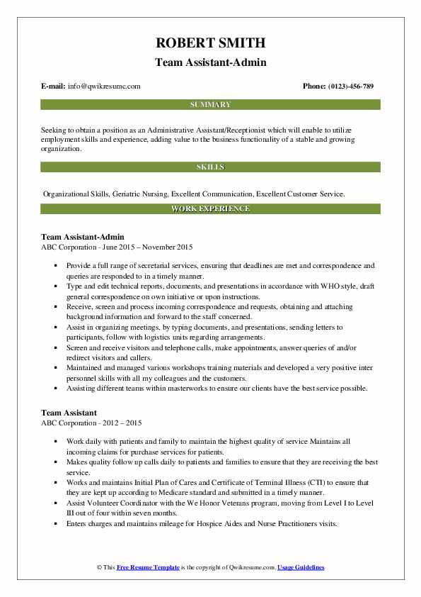 Team Assistant-Admin Resume Template