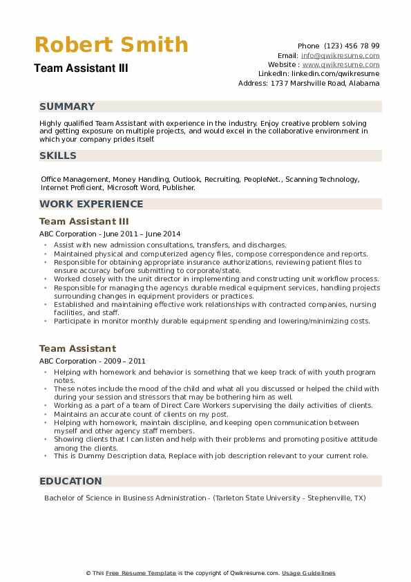Team Assistant III Resume Template