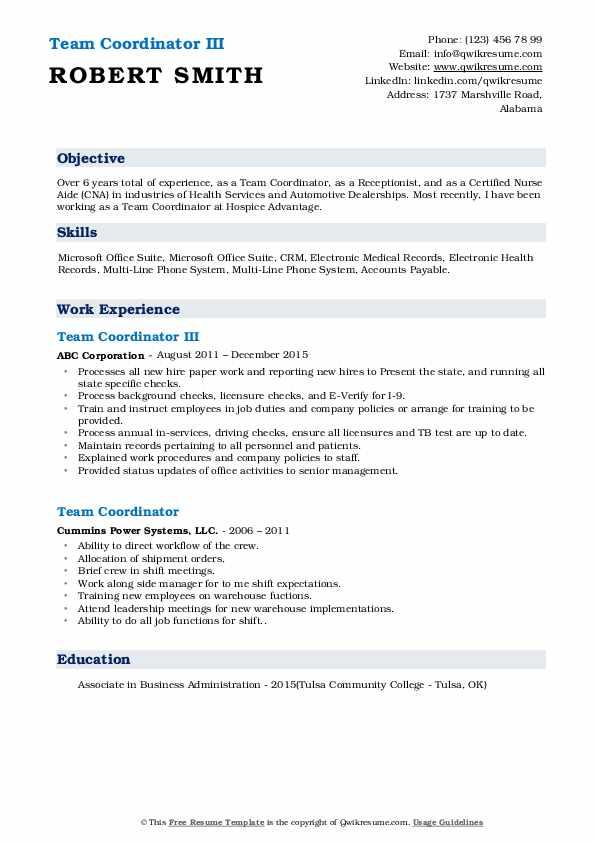 Team Coordinator III Resume Sample