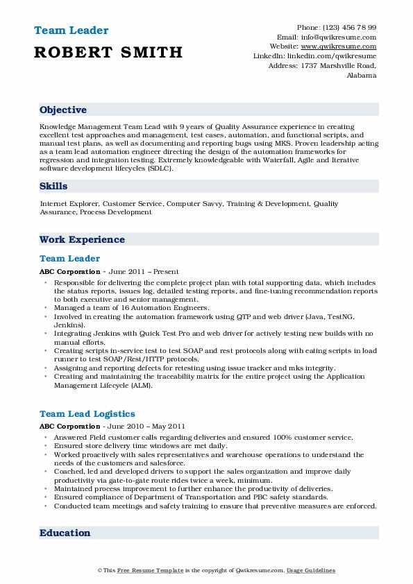 Team Leader Resume Model