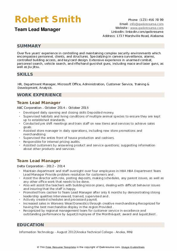 Team Lead Manager Resume example