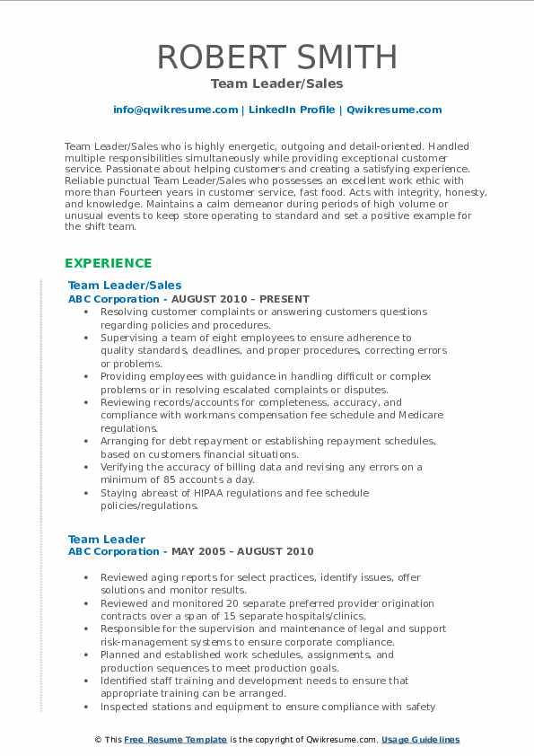 Team Leader/Sales Resume Example