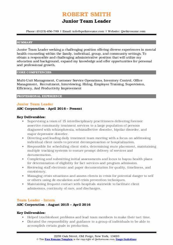 Junior Team Leader Resume Format