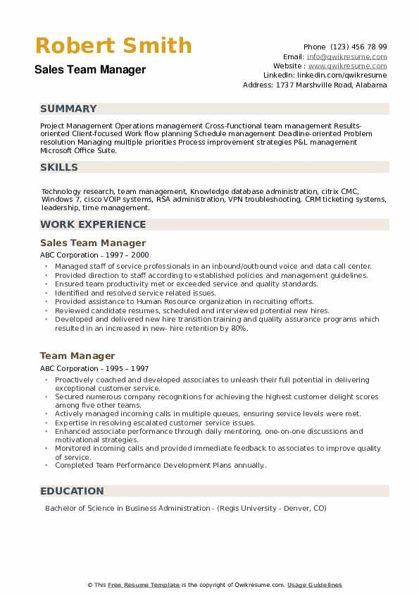 Sales Team Manager Resume Template