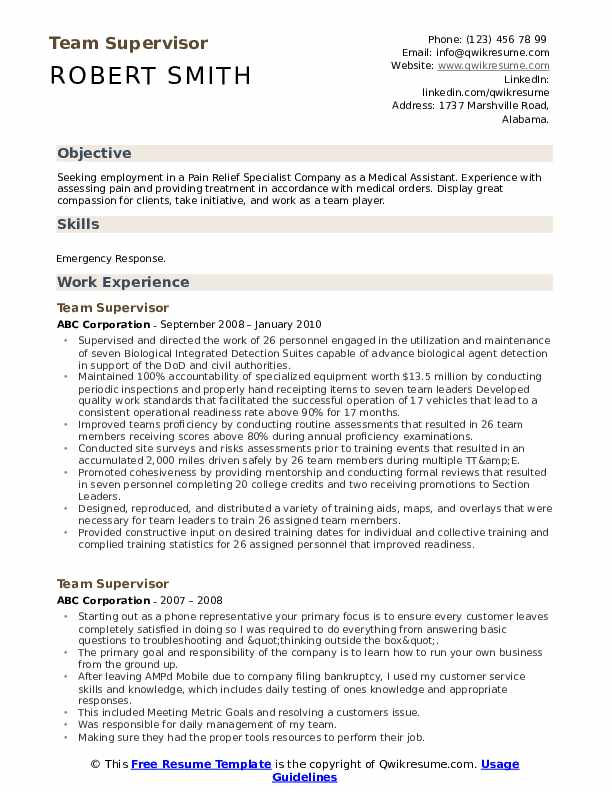 Team Supervisor Resume Model