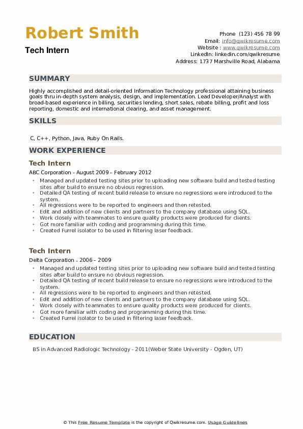 Tech Intern Resume example