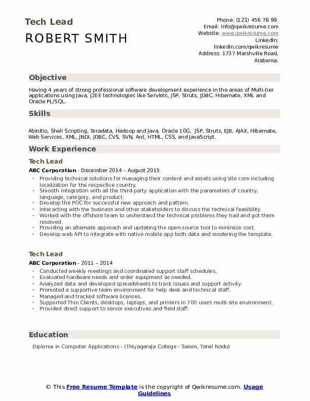 Tech Lead Resume Model