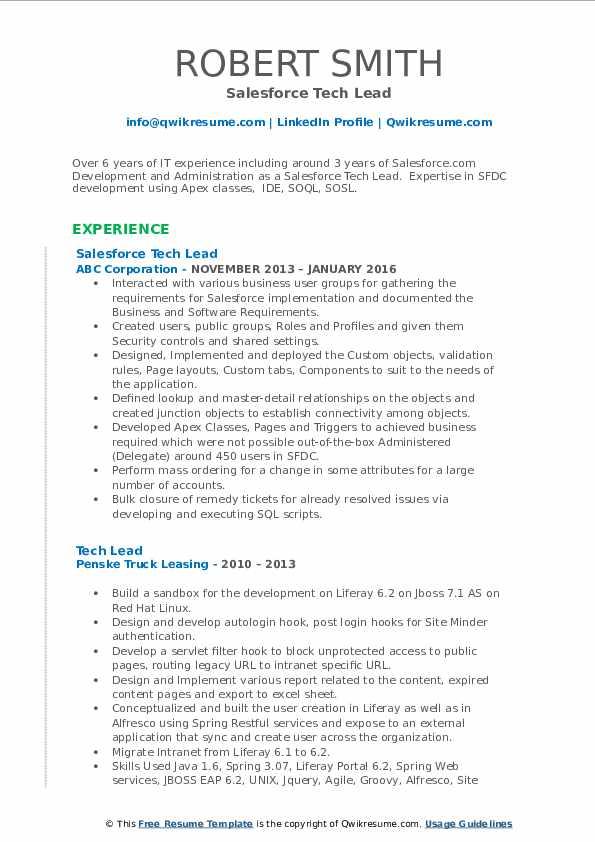 Salesforce Tech Lead Resume Example