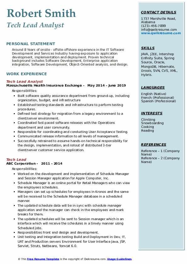 Tech Lead Analyst Resume Format